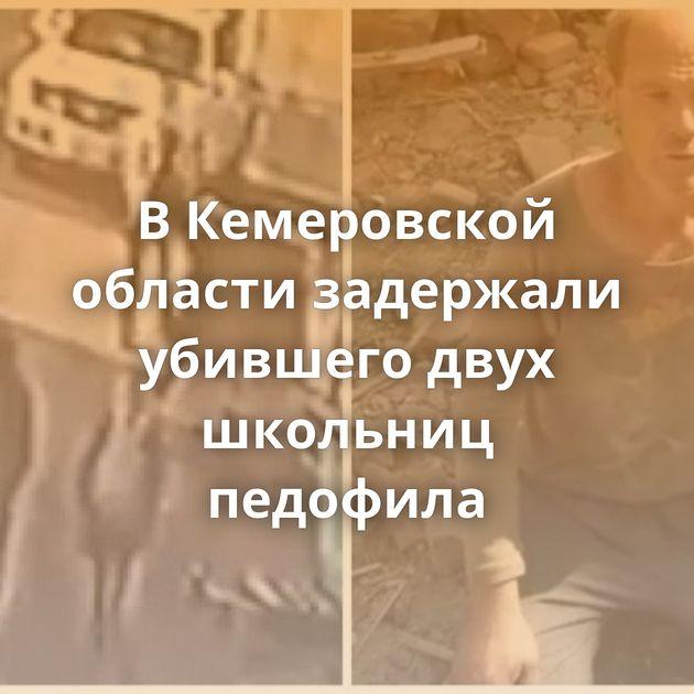 ВКемеровской области задержали убившего двух школьниц педофила
