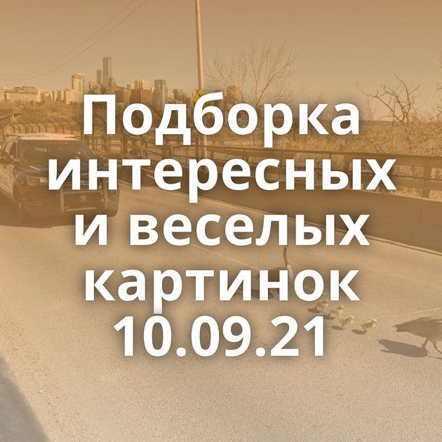 Подборка интересных и веселых картинок 10.09.21