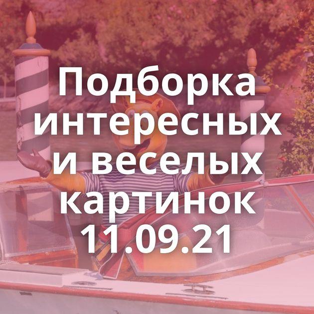 Подборка интересных и веселых картинок 11.09.21