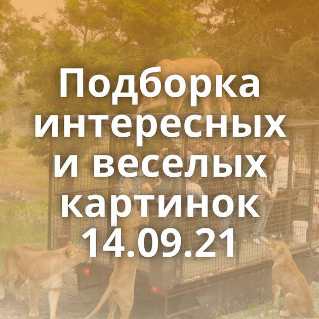Подборка интересных и веселых картинок 14.09.21