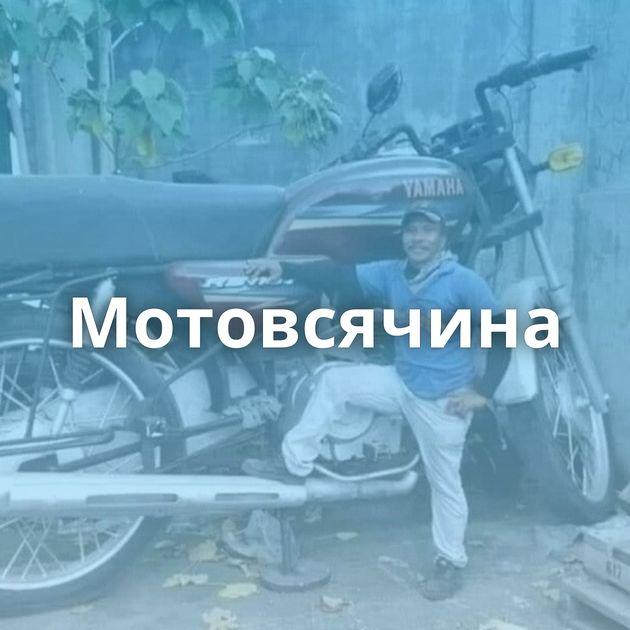 Мотовсячина