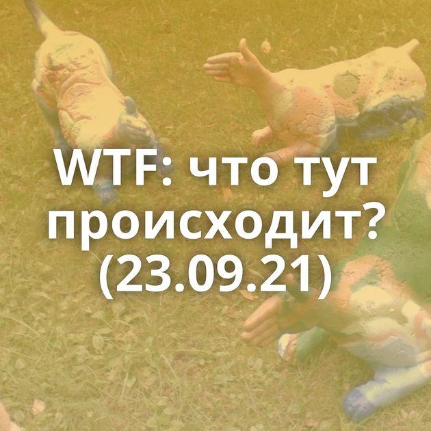 WTF: что тут происходит? (23.09.21)