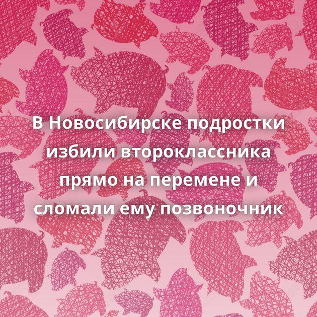 В Новосибирске подростки избили второклассника прямо на перемене и сломали ему позвоночник