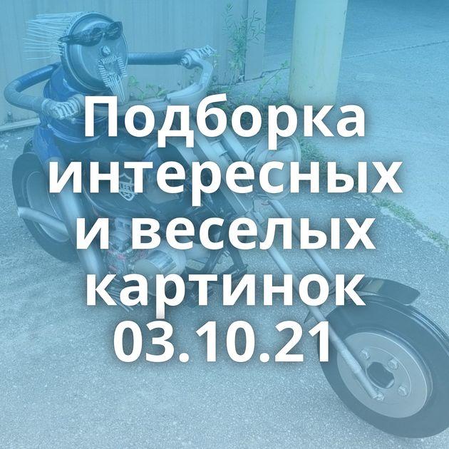 Подборка интересных и веселых картинок 03.10.21