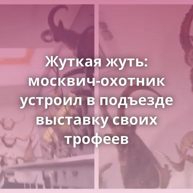Жуткая жуть: москвич-охотник устроил вподъезде выставку своих трофеев