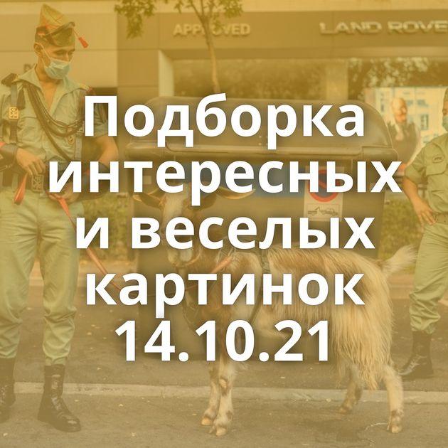 Подборка интересных и веселых картинок 14.10.21