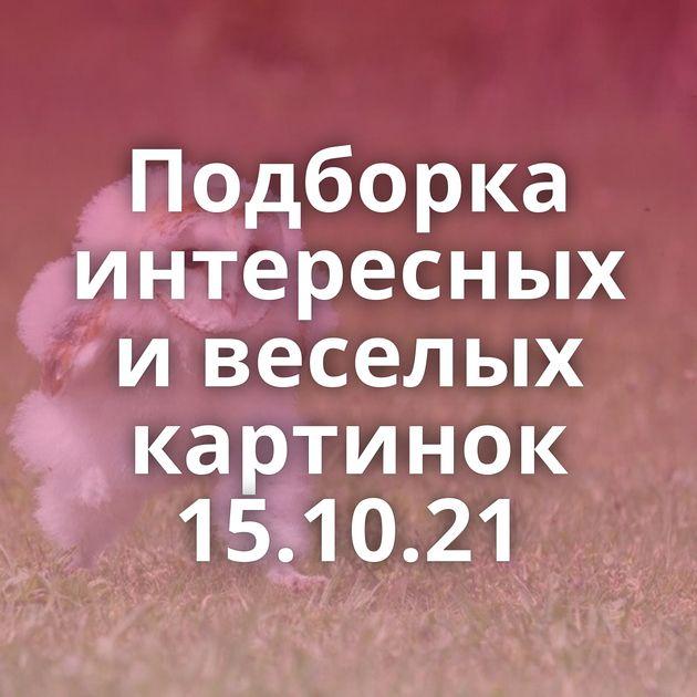 Подборка интересных и веселых картинок 15.10.21