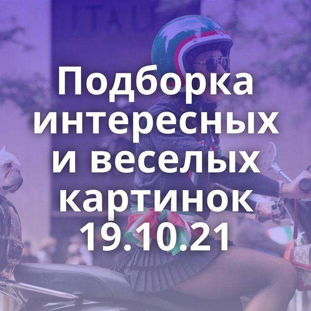 Подборка интересных и веселых картинок 19.10.21