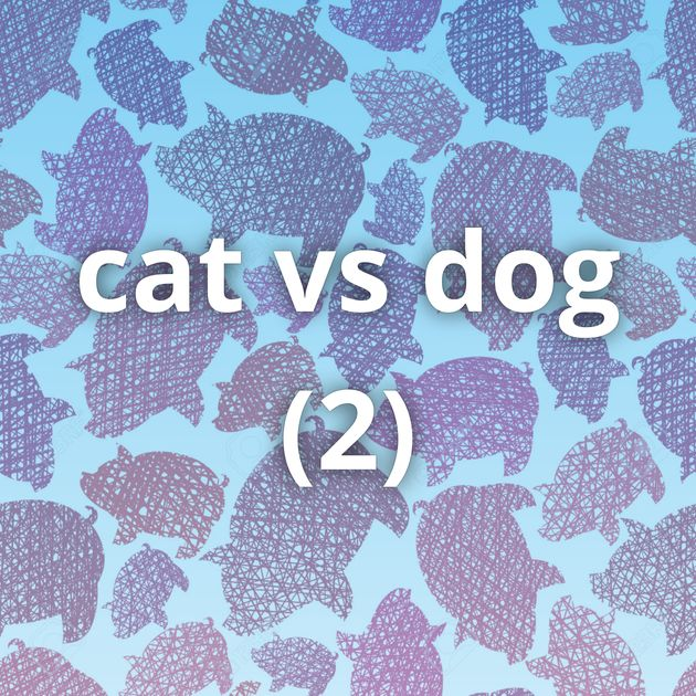cat vs dog (2)