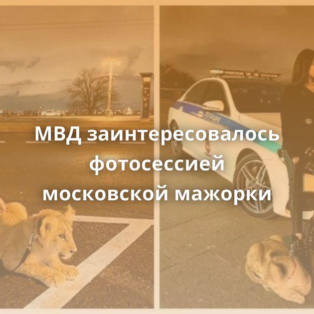 МВДзаинтересовалось фотосессией московской мажорки