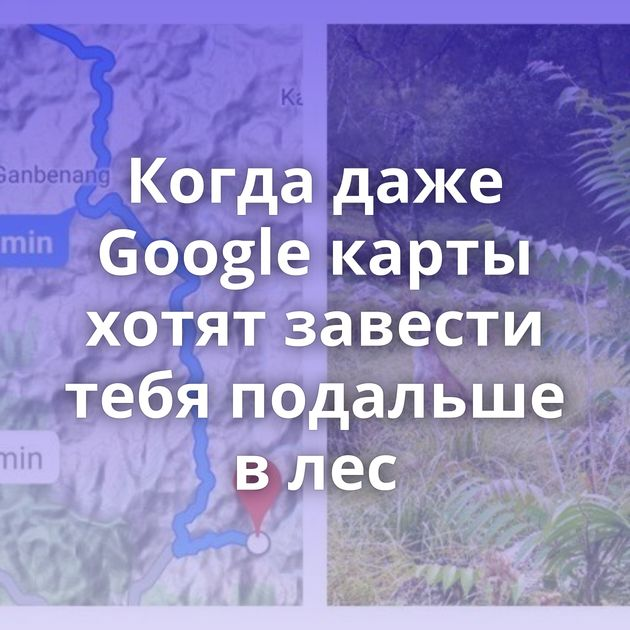 Когда даже Google карты хотят завести тебя подальше влес