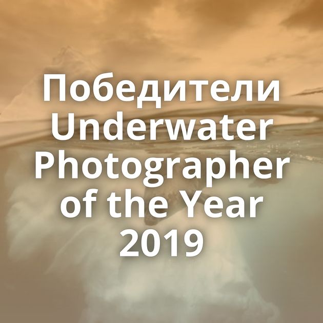 Победители Underwater Photographer of the Year 2019