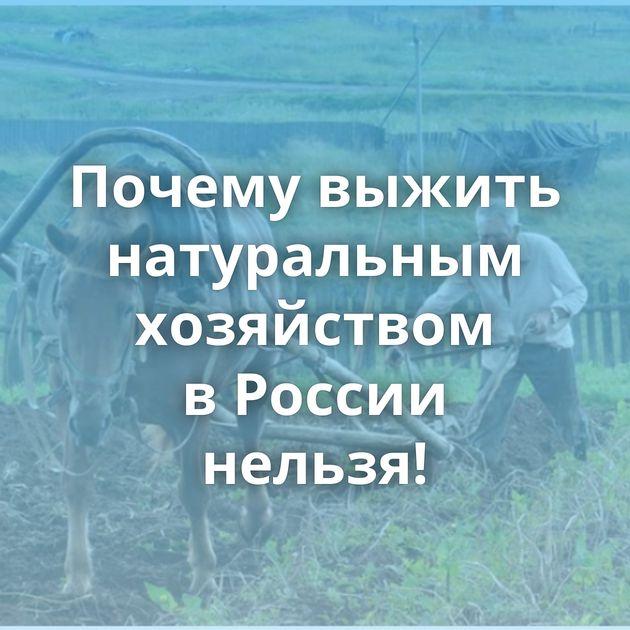 Почему выжить натуральным хозяйством вРоссии нельзя!