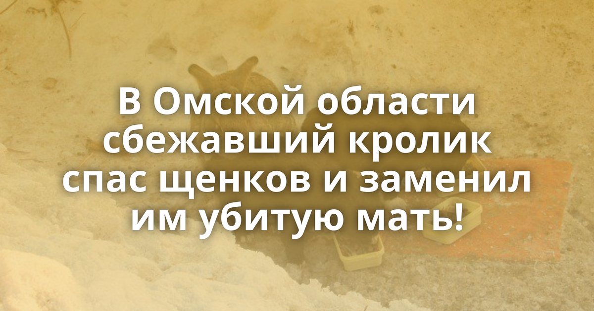 знакомства в кормиловке омской области
